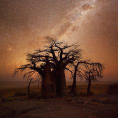 African Nightfall by Hougaard Malan, via 500px. Kubu Island, Makgadikgadi Pans, Botswana.