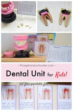 Dental Unit for Kids with free learning materials.