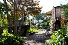 "Courtyard ""cafe La Famille"" Yuki City, Ibaraki Prefecture 