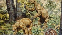 Who-dunnit? We-dunnit! Scientists Solve Megafauna Murder Mystery via popgeeks.net