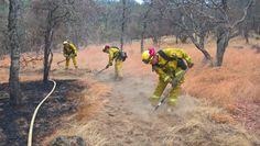 Die neue Standardunterwäsche der australischen Feuerwehr Armadillo, Fire Department, Proud Of You