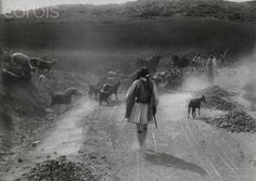 A shepherd tends to his flock as bystanders watch from the roadside-Sparta,Greece-Fred Boissonnas Sparta Greece, Athens Greece, National Geographic Images, Greek History, Frederic, Royal Guard, Rich Image, Bible Art, Photo Library