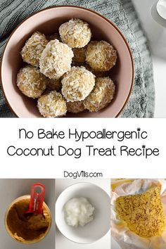 Ready for another delicious no-bake hypoallergenic dog treat recipe? These coconut treats aren't just oven-free, they're good for Fido's skin too! Pumpkin Dog Treats, Homemade Dog Treats, Healthy Dog Treats, Dog Treat Recipes, Dog Food Recipes, No Bake Dog Treats, Doggie Treats, Hypoallergenic Dog Treats, Lucky Food