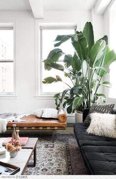 The perfect mix for a stylish living room. A bit of boho, vintage and glam.