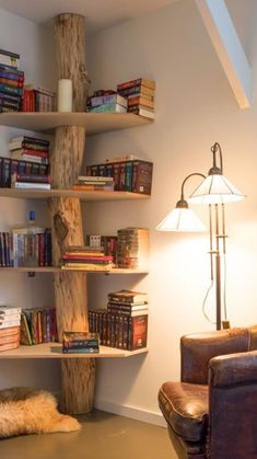 Creative Bookshelves, Bookshelf Ideas, Rustic Bookshelf, Shelving Ideas, Corner Bookshelves, Bookshelf Decorating, Bookshelf Design, Tree Bookshelf, Bedroom Bookshelf