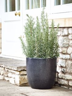 Made from lightweight and weather resistant fibreglass, our large planter has crushed marble and granite embedded into the polyresin giving a stylish faux granite finish. Especially designed to be frost resistant, the insulating material promotes plant growth and holes can be easily drilled into the base for drainage. Ideal for using both indoors and outdoors, the faux granite finish is UV protected to prevent fading and light enough to move around to the perfect place.