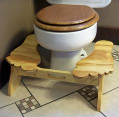 The Stool Tool Is My Version Of A Squatty Potty I Made