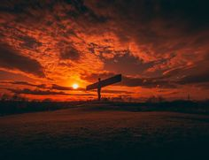 England's Big Picture: 22 - 28 March - BBC News Picture Boards, Outdoor Sculpture, Nature Reserve, Big Picture, Bbc News, Northern Ireland, Ancestry, Hampshire, All Pictures