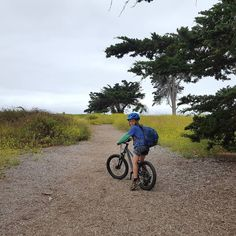 We found some great trails for kids mountain biking at Carpinteria State Beach. Biking along the trail was a great activity for this cloudy beach day.  From the campground we rode about a mile to a seal sanctuary lookout along gravel single track wood chips and hard pack dirt. It was a good intro for Big E who loved riding his @prevelobikes Zulu Three. Plus SEALS! Super cool! There were over 100 laying on the beach.  Have you seen any cool animals near you lately?