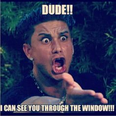 seriously!!! we can SEE YOU you are not as stealthy as you think you are!!! and when the dog barks and looks back and then stops barking, we kinda know your there