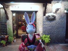 【丸太町東洋亭】  大正6年創業の歴史を持つ京都の老舗レストランです。お勧めはビーフシチュー。タイムスリップしたような店内の趣が落ち着けます。