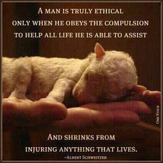 ♥ A man is truly ethical only when he obeys the compulsion to help all life he is able to assist and shrinks from injuring anything that lives. ~Albert Schweitzer