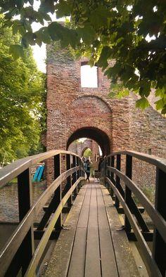 Ruine van Brederode (nog eentje!)