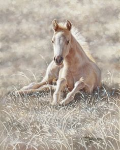 palomino foal painting by Ann Hanson