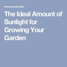 The Ideal Amount of Sunlight for Growing Your Garden