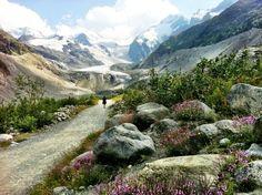 Morteratsch Glacier, St. Moritz, Switzerland