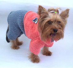 Pet Dog Lover Gift Large Medium Sweater Pet by LyudmilaHandmade