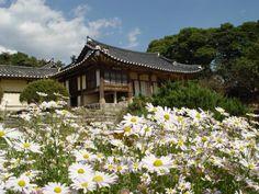 논산 명재고택 Myeongjae-gotaek(old house) @ Nonsan (nearby Daejeon city), Korea Korean Traditional, Traditional House, Springfield House, Bukchon Hanok Village, Beautiful Places, Beautiful Pictures, Architecture Old, Background Pictures, 14th Century