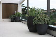 Jardim em Longueville, em Sydney, estado de Nova Gales do Sul, Australia.