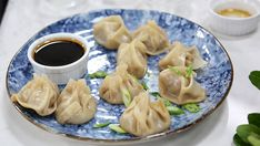 Chinese chicken dumplings with spicy soy with green onion, garlic, cabbage, ginger and wonton shells. Homemade Chinese chicken dumplings with spicy soy dinner meal. Cooking Chinese Food, Asian Cooking, Appetizer Dishes, Appetizer Recipes, Holiday Appetizers, Holiday Recipes, Asian Recipes, Healthy Recipes, Ethnic Recipes