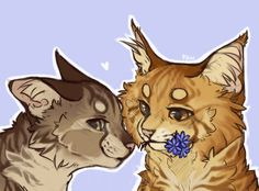 Leafpool and Mothwing by GrayPillow