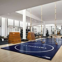 La Palestra - Frank Gehry designs a holistic health and fitness center tucked below NYC's Plaza Hotel