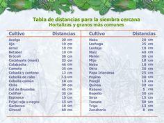 Tabla de distancias para la siembra cercana Hortalizas y granos más comunes cm cm cm cm cm cm cm cm cm cm cm cm cm cm cm c...