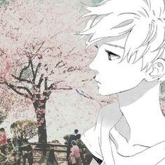 #Anime #Collage #Shoujo #Manga #Sakura Manga: HNR