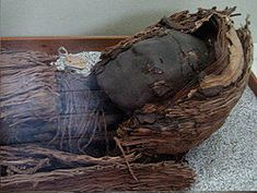 The Chinchorro mummies are mummified remains of individuals from the South American Chinchorro culture, found in what is now northern Chile and southern Peru. They are the oldest examples of artificially mummified human remains, becoming popular up to two thousand years before the Egyptian mummies. To put this in perspective, the earliest mummy that has been found in Egypt dated around 3000 BC, while the oldest mummy recovered from the Atacama Desert is dated around 7020 BC.