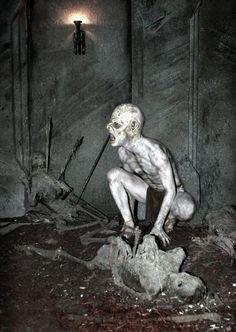 Imagens bizarras que causam medo – Filho vem ver