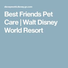 Best Friends Pet Care | Walt Disney World Resort