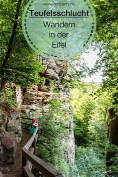 Ausflüge in Rheinland-Pfalz: Abenteuer Teufelsschlucht The Devil's Gorge in the Eifel is a popular destination and perfect for hiking with children. Other destinations: mrsberry. Places To Travel, Places To See, Travel Destinations, Travel Around The World, Around The Worlds, Rhineland Palatinate, Parc National, Travel Goals, Germany Travel