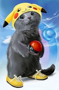 Kajenna Lorri Ukraine Kitten-chu by Kajenna on DeviantArt Kittens Cutest, Cats And Kittens, Animals And Pets, Cute Animals, Animal Gato, Gatos Cats, Cute Animal Drawings, Halloween Cat, Cat Drawing