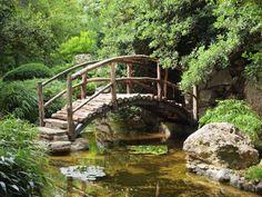 Zilker Botanical Garden, Austin,TX - Steve's Digicams Forums