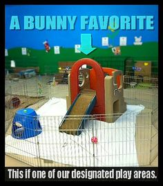 A play area for the bunnies at Tranquility Trail Animal Sanctuary. www.tranquilitytrail.org