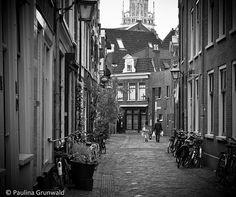 Lazy Saturday in Haarlem, The Netherlands Haarlem Netherlands, Lazy Saturday, To Go, Explore, Architecture, Nature, Photography, Arquitetura, Naturaleza