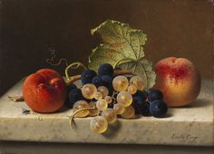 Emilie Preyer - Fruit still life with two peaches and blue and green grapes on the branch and a vine leaf