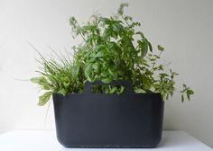 Pinspire - contenedor Boholmen de Ikea como macetero de plantas aromáticas