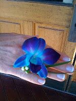 Fresh Orchid Ring