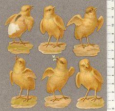 Kycklingar-6-st | Flickr - Photo Sharing! Vintage Ephemera, Vintage Cards, Vintage Images, Easter Bun, Easter Stuff, Spring Images, Easter Pictures, Old Paper, Vintage Easter