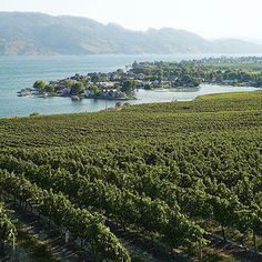 British Columbia's Okanagan Valley   Famous for it's fruit orchards, wine making and tourism.