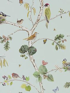 Buy Sky Blue / Multi Sanderson Woodland Chorus Wallpaper from our Wallpaper range at John Lewis & Partners. Toile Wallpaper, Chinoiserie Wallpaper, Bird Wallpaper, Wallpaper Murals, Beautiful Wallpaper, Multicoloured Wallpaper, Hand Painted Walls, Architecture Tattoo, Banquettes