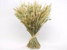 Natural Grasses - for bouquets, boutonnieres, centerpieces, pew decorations, stage decorations, etc.