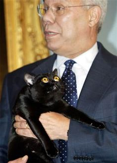 Colin Powell and cat. Possibly alien cat, or perhaps merely dismayed.