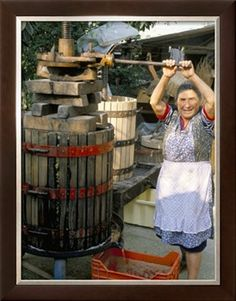 A Local Winemaker Pressing Her Grapes at the Cantina, Torano Nuovo, Abruzzi, Italy Photographic Print by Michael Newton at Art.com