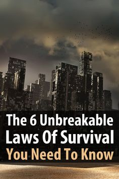 Survival Life recently put together an awesome article based on a video by City Prepping. It serves as an excellent intro to preparedness.
