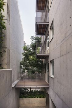 Gallery - Housing Building in Mexico City / Vicente Alonso Ibarra - 9