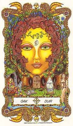 Oak Mother's Celtic name is Duir. It means door and is derived from the word Druid or Druidess, the Celtic person who has mastered memory, intuition, healing, knowing and magic. Wiccan, Magick, Pagan, Celtic Astrology, Magical Tree, Celtic Goddess, The Ancient One, Legends And Myths, Celtic Tree