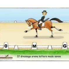♥ Pinned with gratitude by www.DressageWaikato.co.nz.