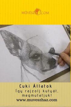 Cuki állatok kis kedvenceink, megmutatjuk, hogyan rajzolj kutyust, katt és nézd: Drawings, Sketches, Drawing, Portrait, Draw, Grimm, Illustrations